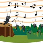 童謡「虫の声」歌詞の意味とは?いったいなんなの?
